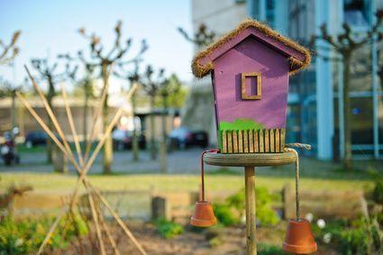 blog ein sch nes vogelh uschen bauen werkzeugstore24. Black Bedroom Furniture Sets. Home Design Ideas